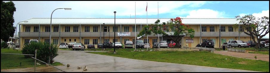 viola hospital