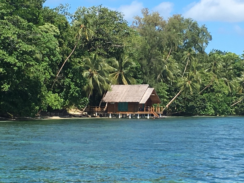 our bungalow over the water